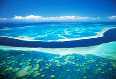 Arrecife de coral-Australia