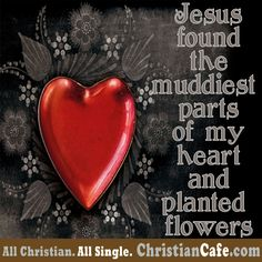 Jesus found the muddiest parts of my heart and planted flowers.