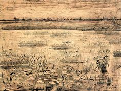 Vincent van Gogh, Marsh with Water Lilies