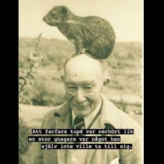 #farfar #gnagare #tupé #öken #humor #löjligt #ironi #fånigt #löjligt #text #foto #fotografi #peruk - villfarelser
