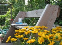Aldo Leopold bench with daises