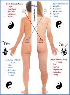Left-Right-Brain-Body-Balancing
