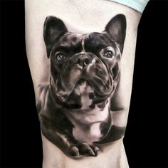 French Bulldog tattoo. Black and White. Realistic. Done by https://www.facebook.com/SilvanoFiatoTattoos