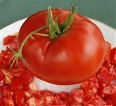 Delicious Tomato Seeds. Above average yields of 1-2 lb., scarlet-red, meaty, beefsteak tomatoes with complex, rich, old-fashioned tomato flavors. Delicious! it is. Delicious tomato still the world record of 7+ pounds for a single fruit!
