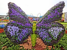 Butterfly Topiary - Epcot Flower and Garden Festival 2016 - In Photos