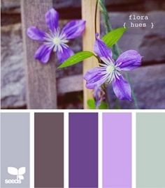 Jasmine Blossoms color board inspiration