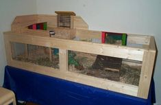 guinea pig housing | Someone went to a lot of work...but it looks like a grown up pig might ...