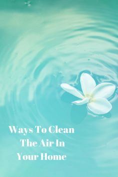 Ways To Clean The Air InYour Home  #essentialoils #houseplants #saltlamp #earthday #cleanair #greenliving