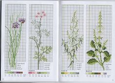 herbes. Five similar patterns also on this website.