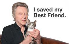 Christopher Walken with a kitten