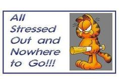 garfield quotes - Google Search