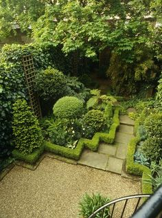 petite boxwood border. Bet I could do this with artificial boxwood then--no trimming!
