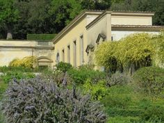 Medici Villas and Gardens in Tuscany - World Heritage Site - Pictures, info and travel reports