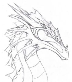 realistic dragon drawings - Google Search                                                                                                                                                                                 More