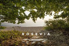 Jeśli szukasz niezwykłego wypoczynku to oferta Rosevia Resort jest właśnie dla Ciebie! Luksusowe apartamenty nad morzem zapewnią Ci niezapomniane wczasy nad Bałtykiem.