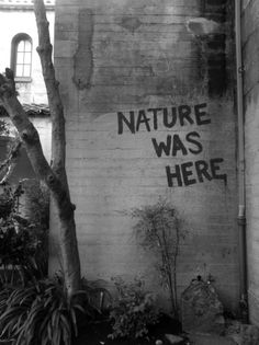 """nature was here"". Street art 000"
