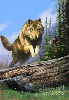 Wolf Run Indian Hunter by Rob Corsetti  kK