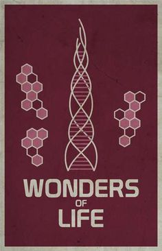 Wonder of Life - Walt Disney's EPCOT retro poster (1983)