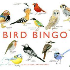 Bird Bingo unusual gifts.