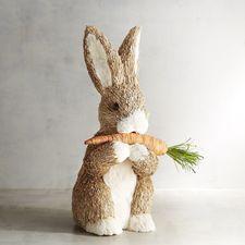 Effie the Natural Bunny With Carrot