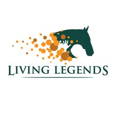 Melbourne Cup Winners, Living Legends, Very Excited, Great Photos, Twitter Sign Up, Hong Kong, Champion, Victoria, Horses