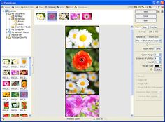 Free Photo Editing Software to Check Out - The Beading Gems Journal