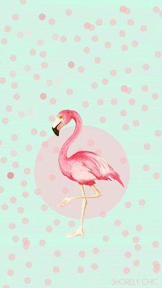 Flamingo Cred: linedeco