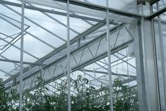 Venlo Glasshouses | Bridge Greenhouses This is popular with tomato growers, allowing then to orientate the roof East/West which is best for winter light, and then crop North/South, which is best for a uniform fruit size. Tomato Growers, Winter Light, North South, Greenhouses, Bridge, Popular, Fruit, Green Houses, Glass House