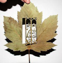 Expressão artística em folhas de árvores | Mol-TaGGe - Arte e Cultura