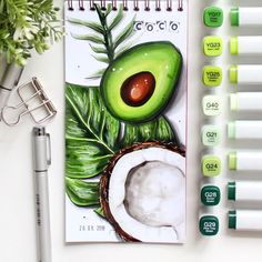 Fruit studies in guashe - A Level Art Sketchbook - Marker Kunst, Copic Marker Art, Copic Art, Sketch Markers, Drawing With Markers, Colorful Drawings, Cute Drawings, Copic Kunst, Drawings Pinterest