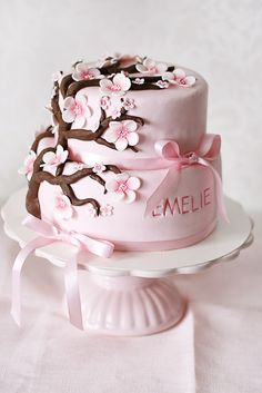 Cake for Miss Emilia's (Nicole's) baby shower...thanks Sherrie this is perfect!