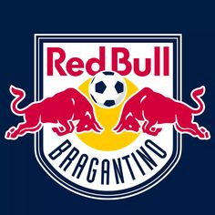 With Daily IPTV you can watch more than live channels and VOD ! Red Bull, Live Channels, Premier League, Club, Sport, Watch, Wallpaper, Name Change, Brazil Flag