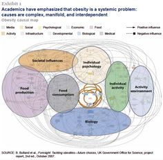 The complexity of obesity