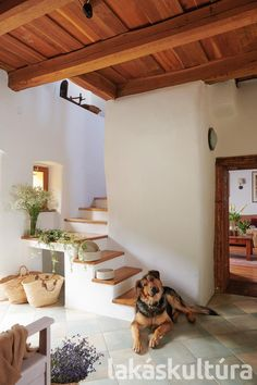 Tiny House, Stairs, Architecture, Wood, Interior, Scale, Houses, Hungary, Arquitetura