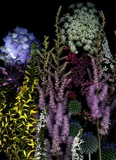 A bouquet by horticultural art, via Flickr