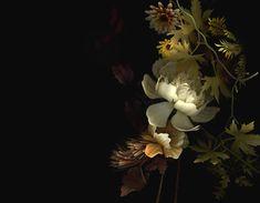 bioposy by yedda morrison #floral