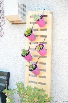 Hanging Succulents - 20 Amazing DIY Accessories for Your Garden