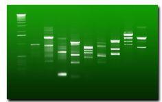 Révélez votre ADN http://www.uncadeaudesidees.fr/2012/05/idee/cadeau/revelez-votre-adn.html