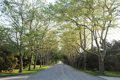 East Hampton - Lily Pond Lane