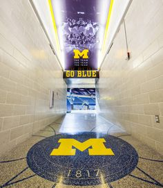 University of Michigan Crisler Center Renovation and Player Development Center – Perkins and Will Western Michigan Football, Michigan Go Blue, Michigan Wolverines Football, State Of Michigan, University Of Michigan, Basketball Season, Football And Basketball, Michigan Athletics, Football Quotes