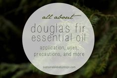 Learn about douglas fir essential oil for respiratory function, clear skin, etc, via SustainableBabySteps.com