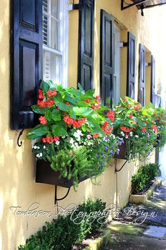 Southern Yellow House with Black Flower Box - Fine Photography