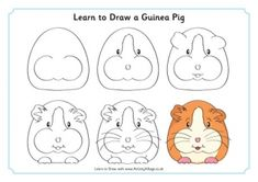 Learn to Draw Animals Art Drawings For Kids, Drawing For Kids, Animal Drawings, Easy Drawings, Guniea Pig, Pig Crafts, Pig Drawing, Pet Guinea Pigs, Directed Drawing