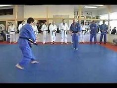 Danzan Ryu NYC Jujitsu demo - YouTube