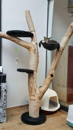 Cat toweres