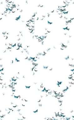 trove - azha wallpaper detail- butterflies blue, crib wall only