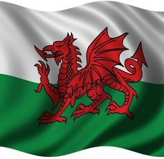 On the national flag of Wales there is red dragon that most people associate with the battle standard of King Arthur and other ancient Celtic leaders. However, the Red Dragon of Wales dates back to Roman times. Dragon King, Water Dragon, Red Dragon, Welsh Dragon, Y Ddraig Goch, Wales Flag, Saint David's Day, England, Places