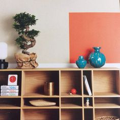 home. Copper Blush, Japanese Style, Bookcase, Shelves, Colours, House Styles, Interior, Home Decor, Shelving