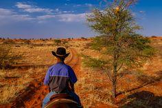 #travel #adventure #sealadventures @sealadventures #travel #voyage #aventure #adventure #journey #trip #photography #photographer #vacances #voyages #landscape #namibia #namibie #africa #cheval #horse