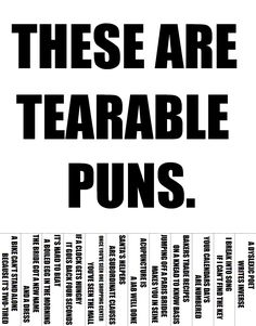 Google Image Result for http://www.sanitaryum.com/wp-content/uploads/2012/05/Terrable-Puns.png